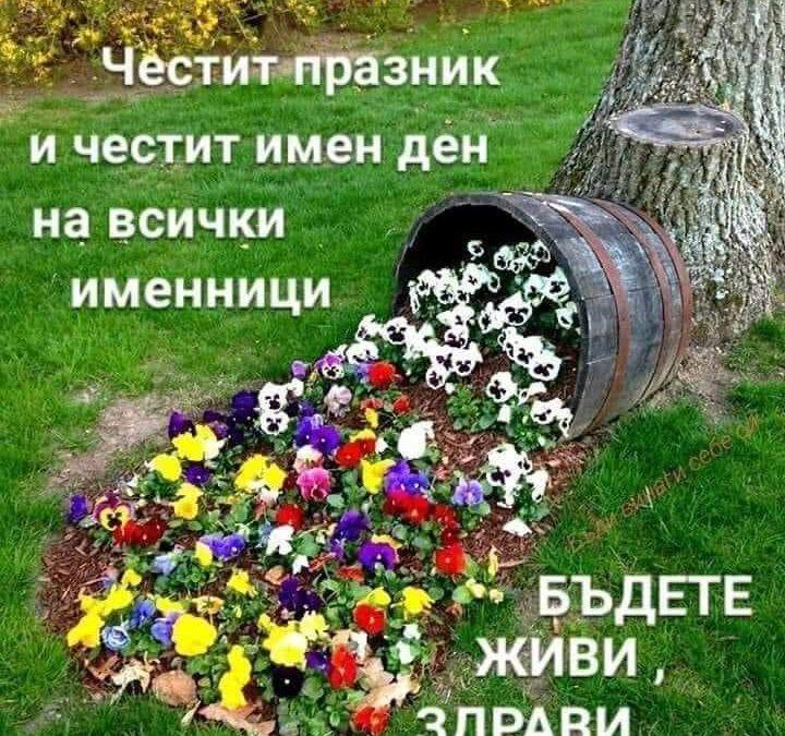 Цветница 🌺🌷❤️