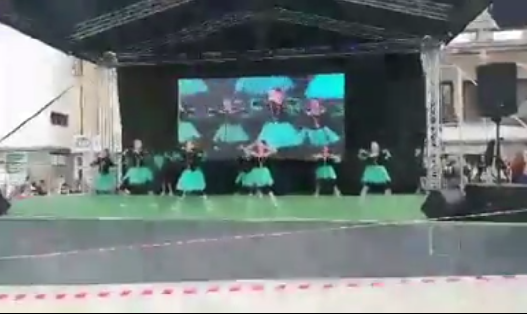 """Международния фестивал на изкуствата """" Южни слънца"""" – град Петрич"""